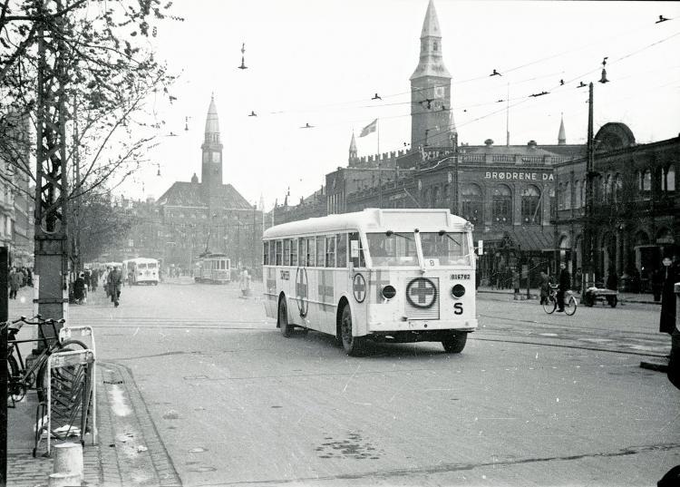 Białe autobusy